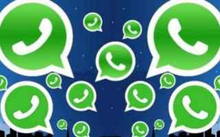 App: whatsapp  business  ios  whatsapp business