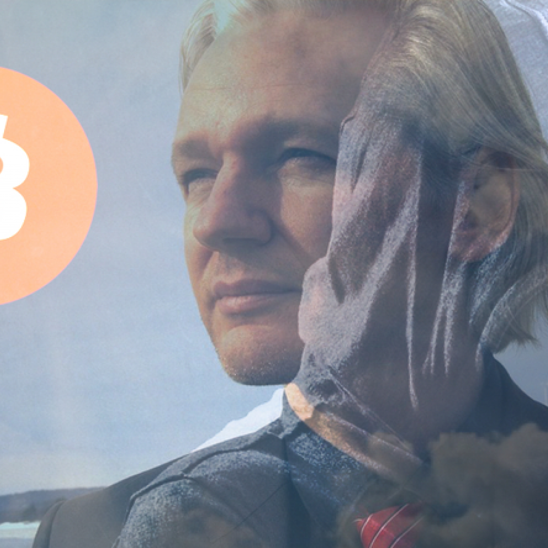 wikileaks  assange  bitcoin  valute