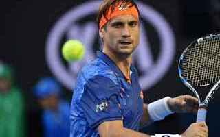 Tennis: tennis  grand slam anversa ferrer