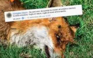 Animali: lav  caccia  animalismo