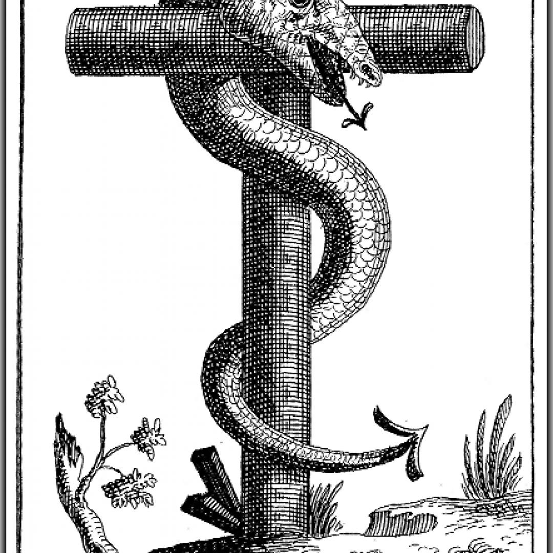 arconti  cosmologia gnostica  anunnaki