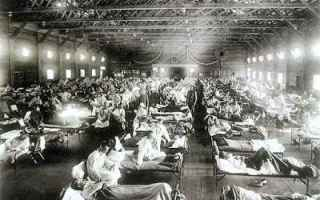 Storia: influenza spagnola garfagnana guerra