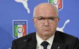 Calcio: calcio  italia  tavecchio