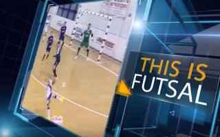 calcio a cinque  calcio  sport  futsal