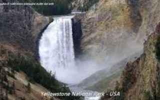 Foto: parco nazionale  yellowstone