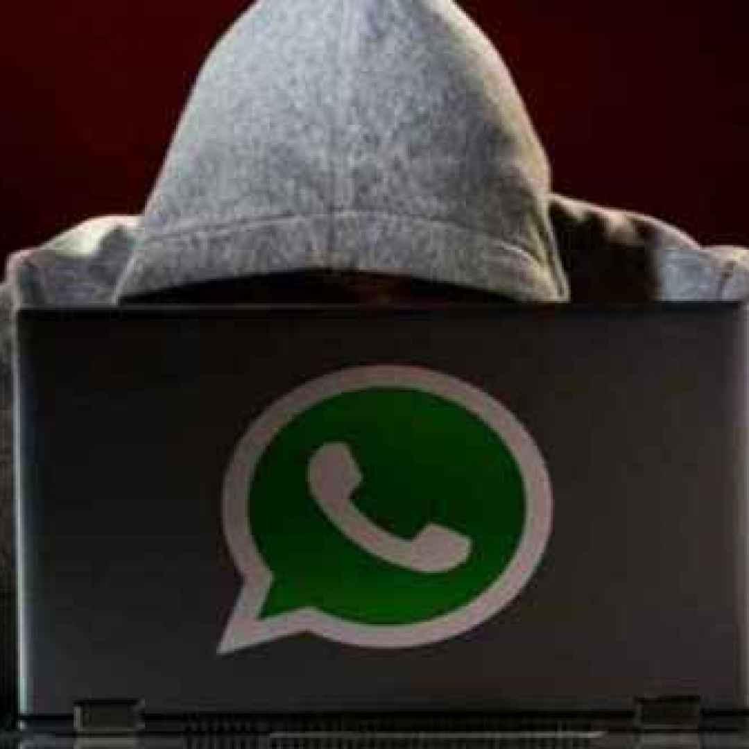 whatsapp  app  android  ios  iphone