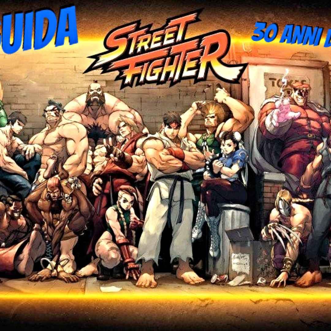 videogames  street fighter  picchiaduro