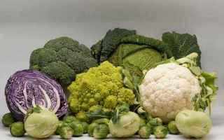 Alimentazione: salute  nutraceutica  nutrizionista