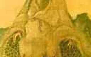 Cultura: annunaki  cinese  egizia  enki  fuxi
