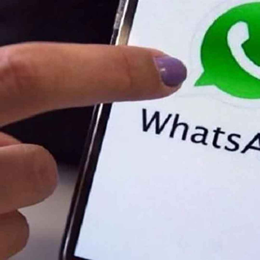 android  ios  whatsapp  app  chat