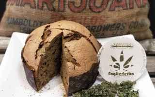 Gastronomia: cannabis  panettone