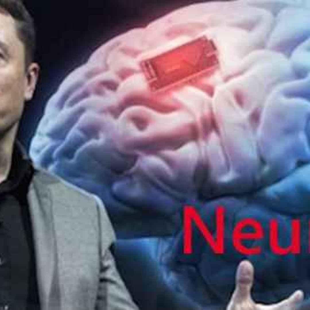 interfacce cervello-macchina nexidia