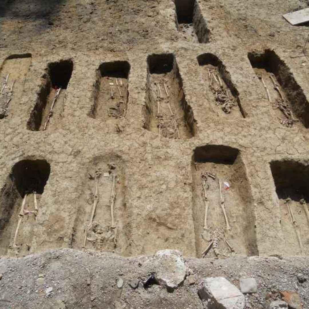 cimitero ebraico  cimitero  ebrei  bologna