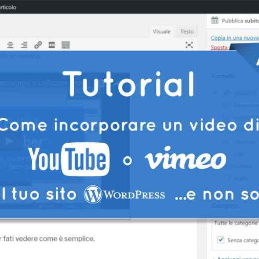 wordpress  youtube  vimeo  incorporare video