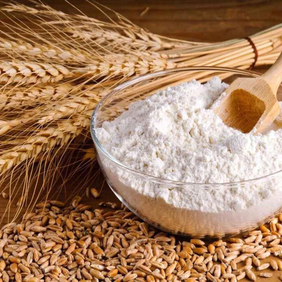 ritiro dal mercato  farina ritirata