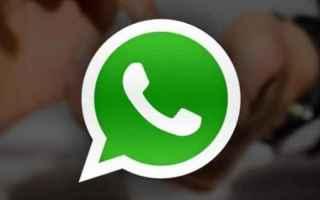 App: whatsapp  bufala