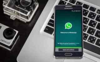 App: whatsapp
