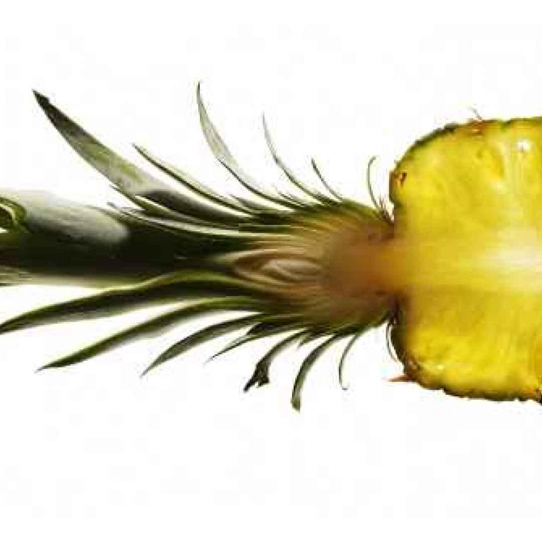 il dimagrimento anana