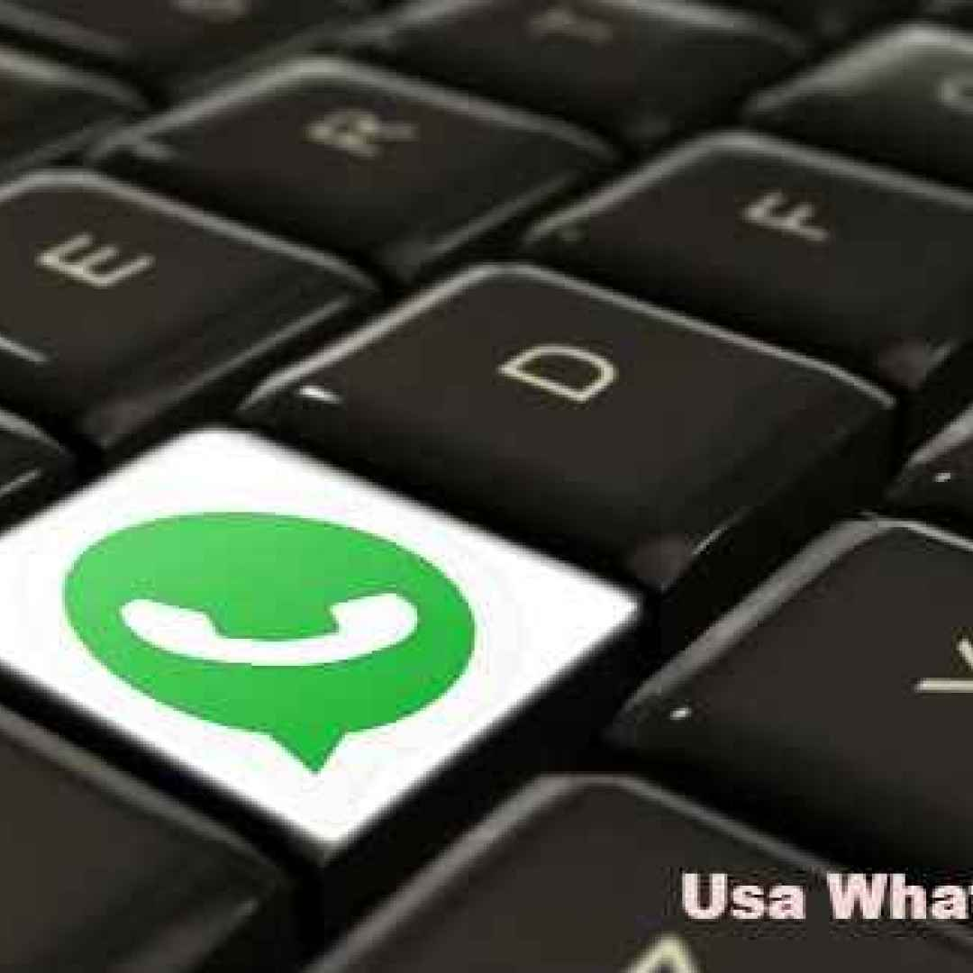 whatsapp  windows  chat  pc