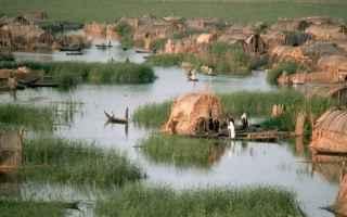 Ambiente: canne  laguna  palude  pianura