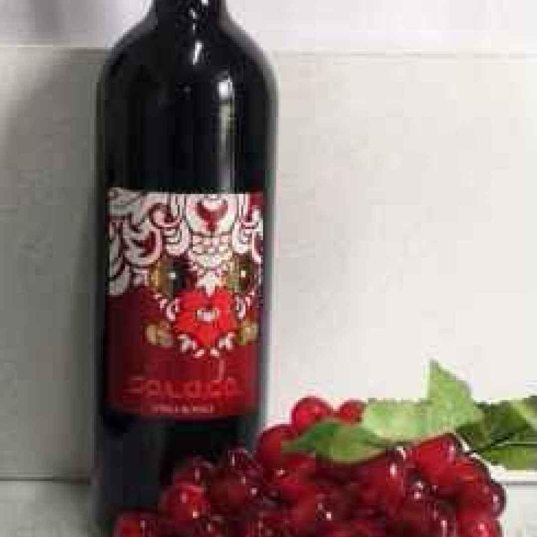 vino  etichette  normativa