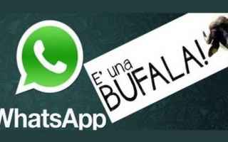 WhatsApp: whatsapp  bufala