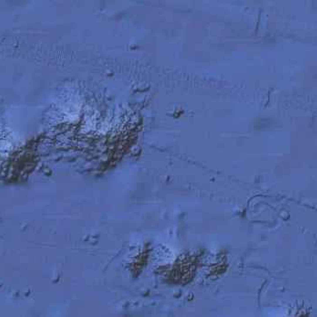 google earth  marcelo igazusta  messico