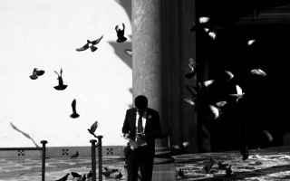 Mostre e Concorsi: fotografia sony concorso