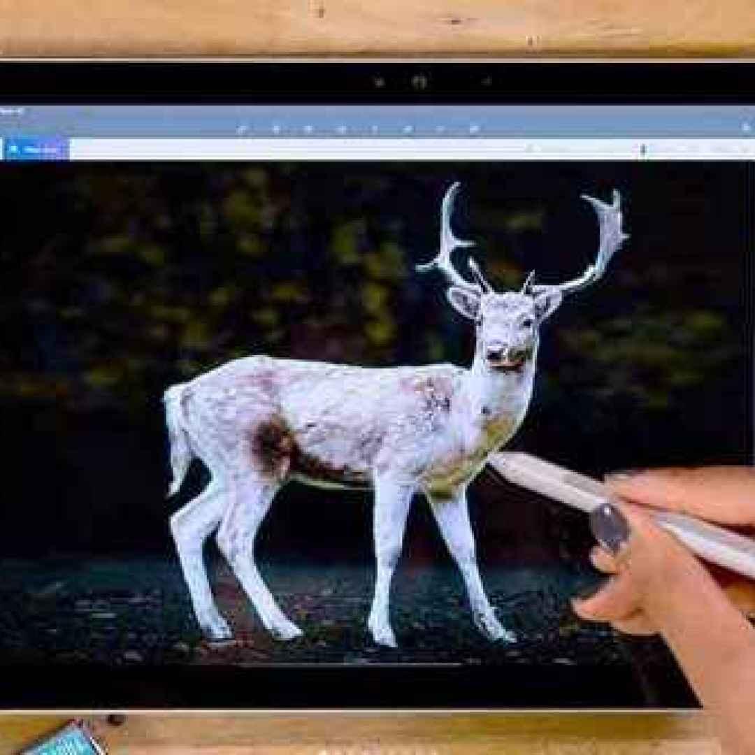 Come Eliminare Lo Sfondo Da Una Foto Con Paint 3d Pc