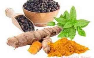 Salute: piperina  curcuma  metabolismo  lipidi