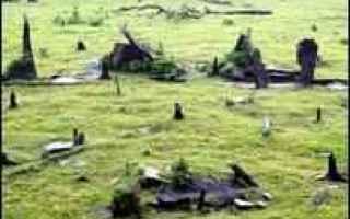 Storia: brasiliani  costruzione  stonehenge