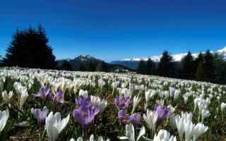 Salute: terme comano  primavera  benessere