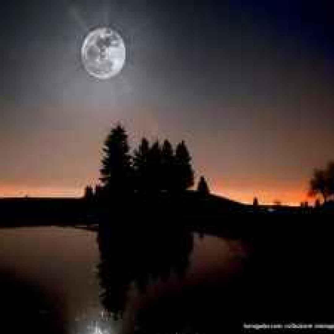 Fotoalbum e video  – Dolce Luna