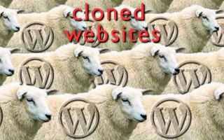 Web Design: website  clone  wordpress  web design