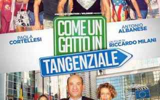 Cinema: film come un gatto in tangenziale
