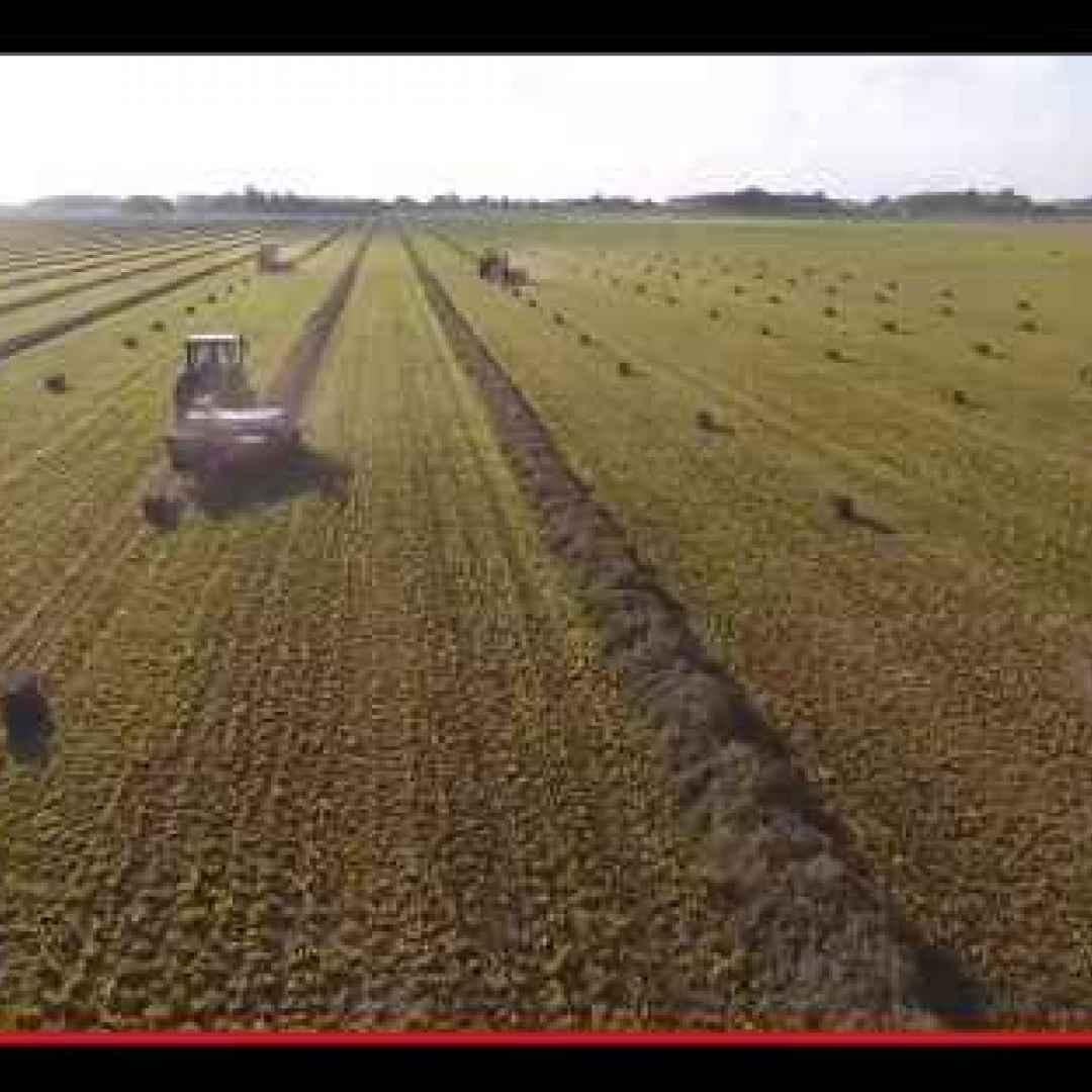 agricoltura  tecnologia  trattori  balle