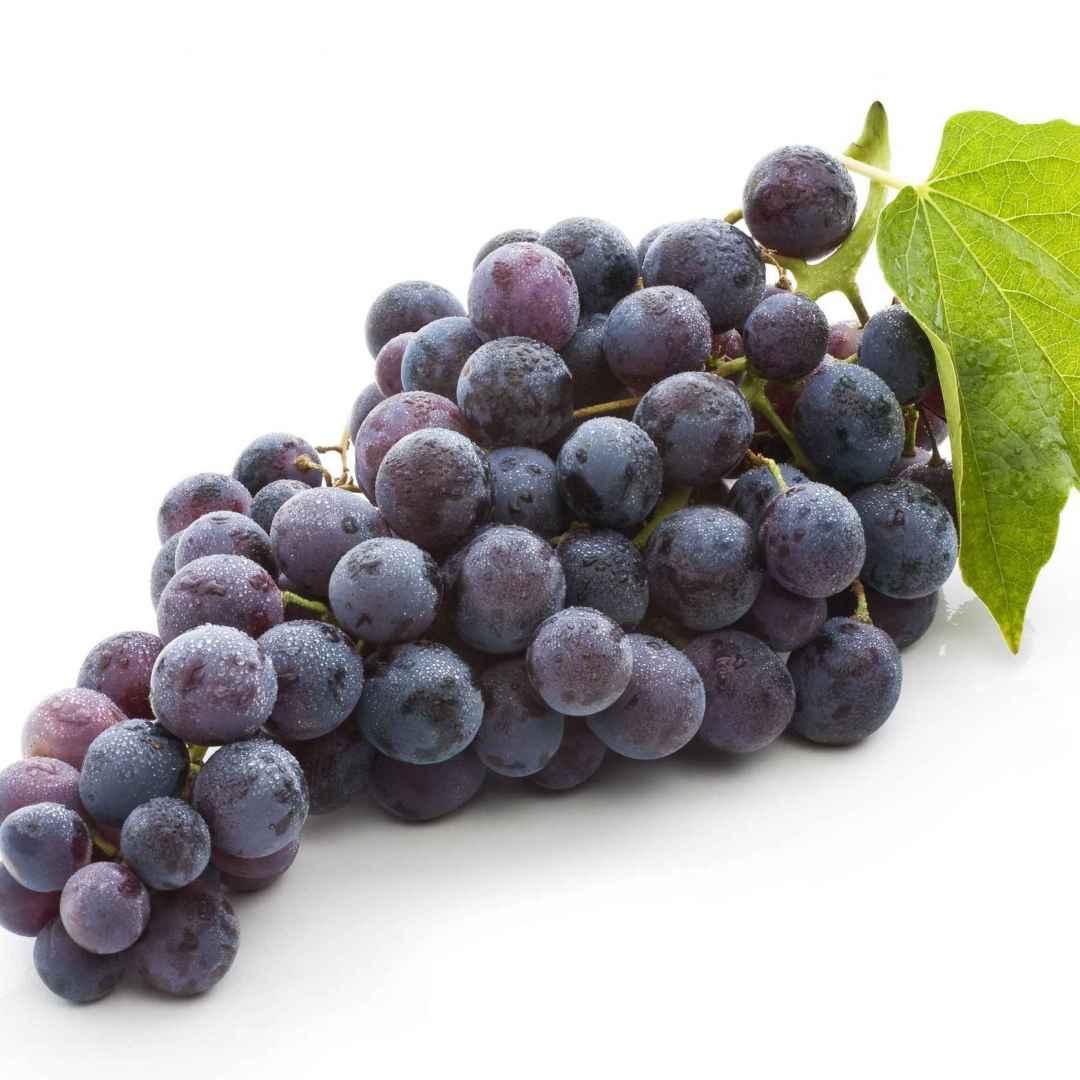 resveratrolo  vino rosso  integratori