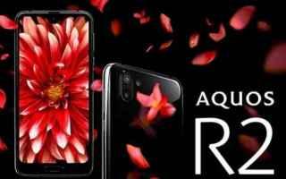 Cellulari: sharp  smartphone