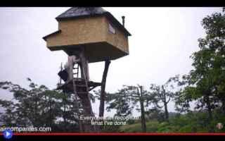 Architettura: giappone  architettura  tè  cerimonie