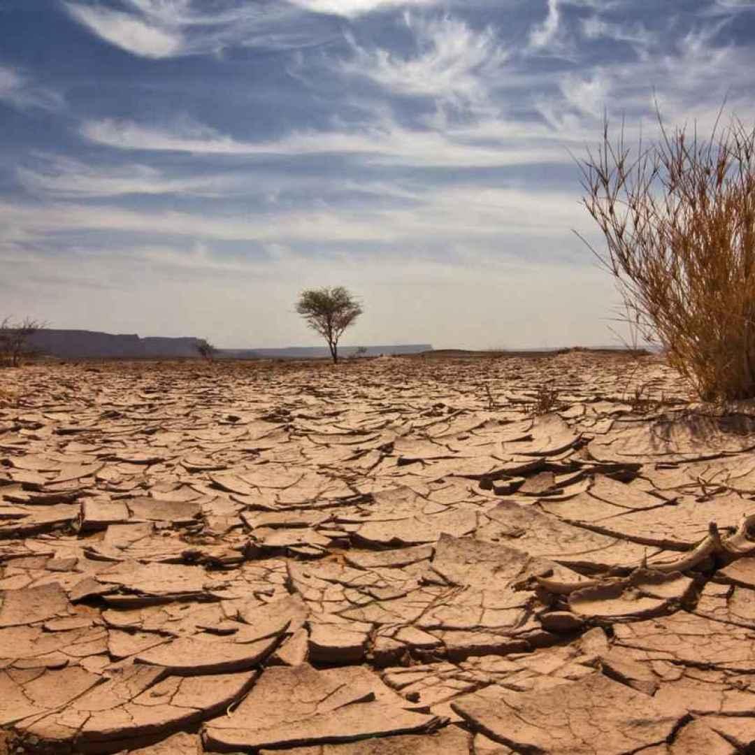 clima  cibo  trasporti