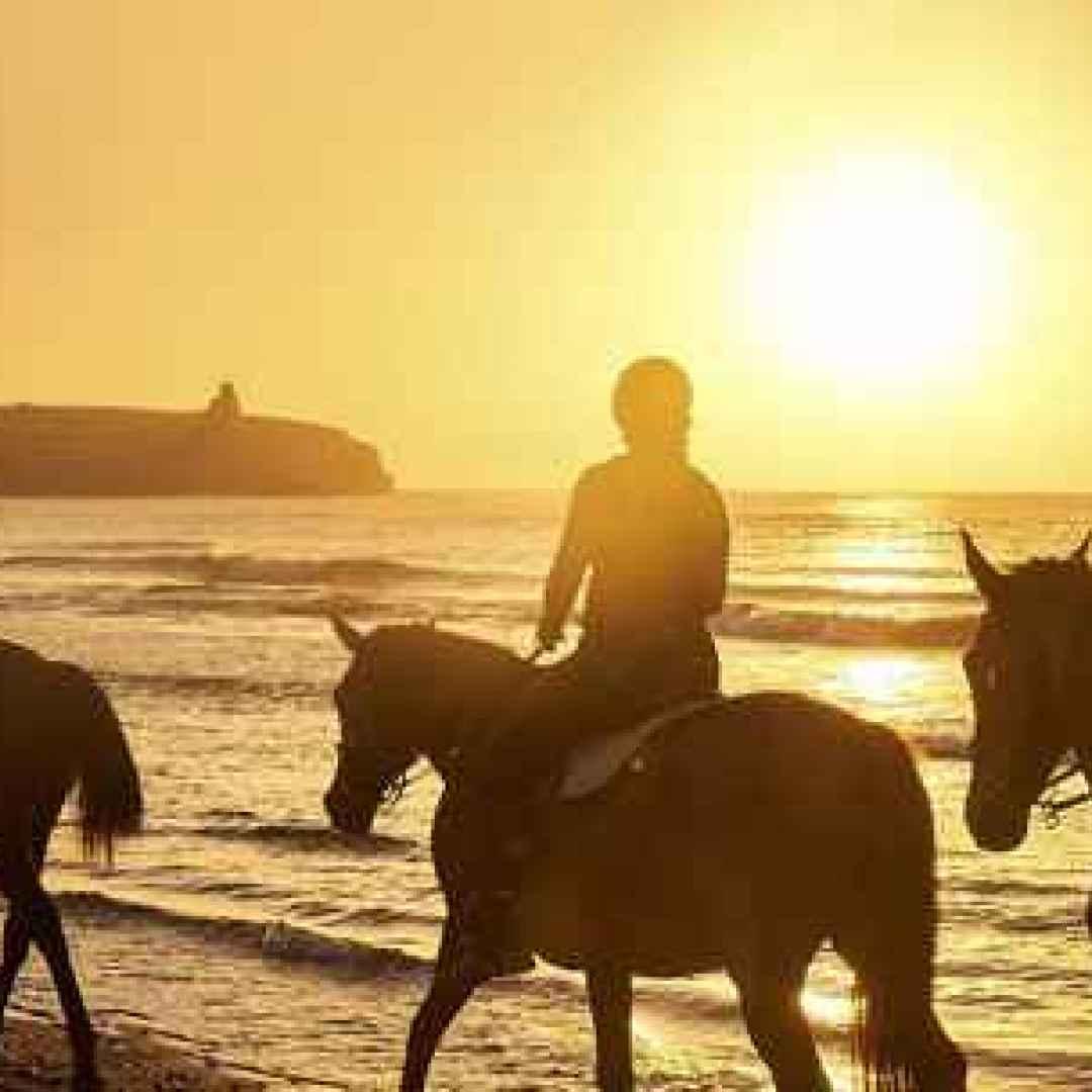 turismo  cavalli  iphone  viaggi  android