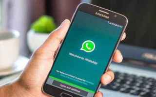 WhatsApp: whatsapp  android  iphone  web