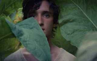 Cinema: cinema  nuovi film lazzaro felice