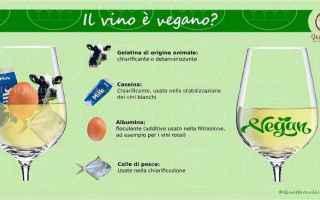 Gastronomia: vino  vegan
