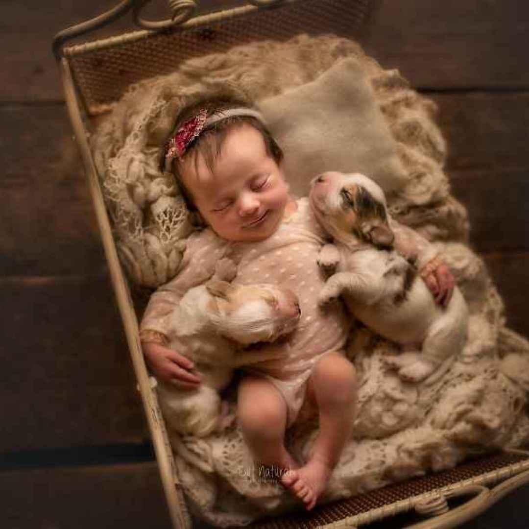 neonati  bambini  fotografia  cani  animali