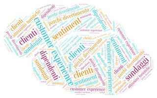 Web Marketing: customer experience  sondaggi