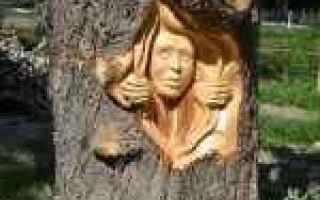Arte: intagliatore  jordan anderson  lupi  mo