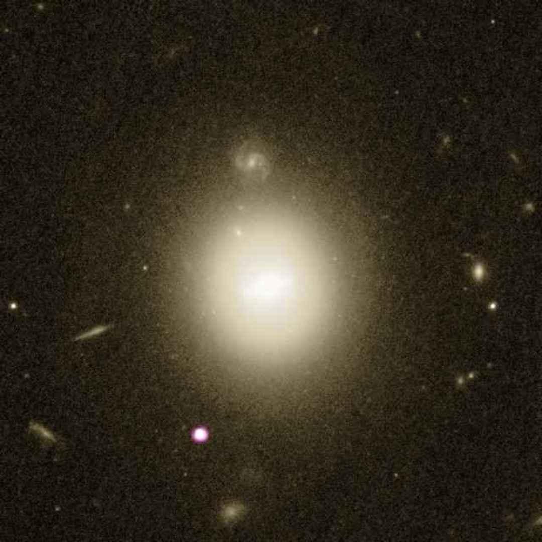 buchi neri  galassie  stelle