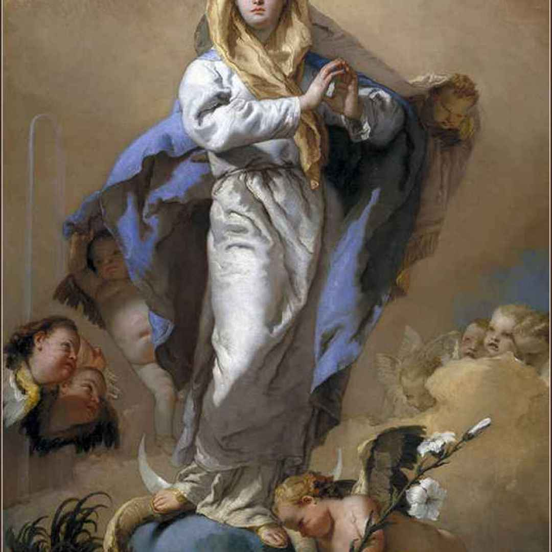 immacolata concezione  madonna  maria