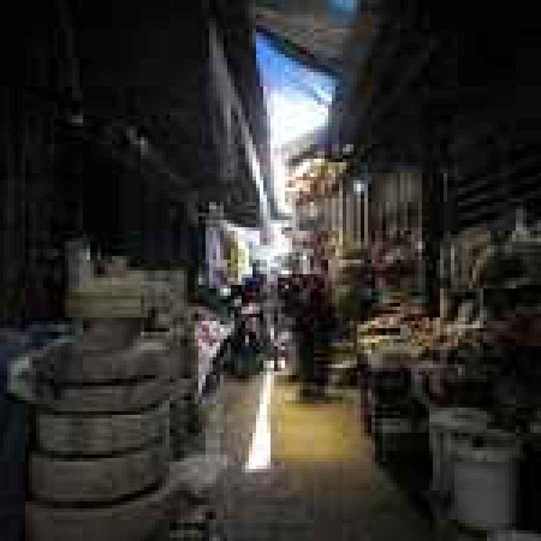 indonesia  viaggi  asia